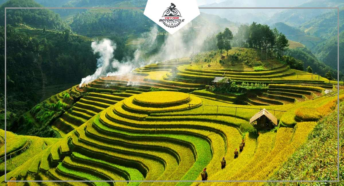 Rice Terraces In Northwest Vietnam