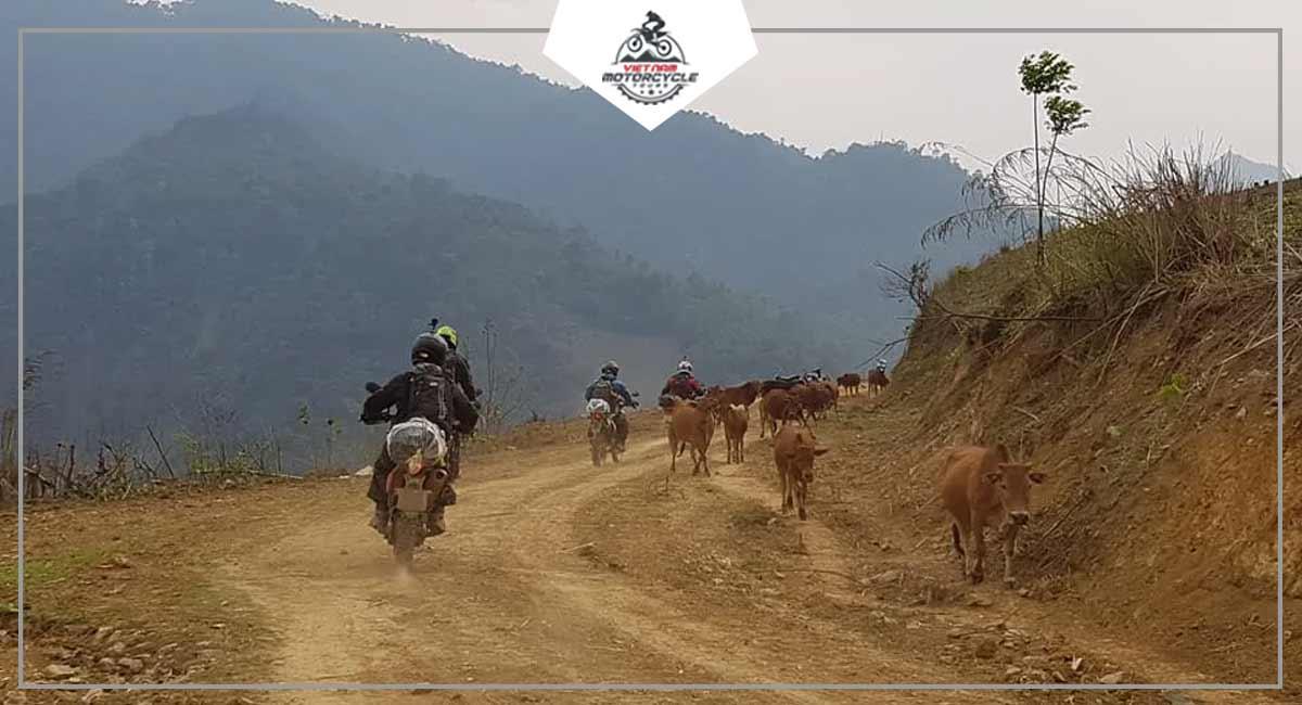 Dirtbike Tour North Vietnam
