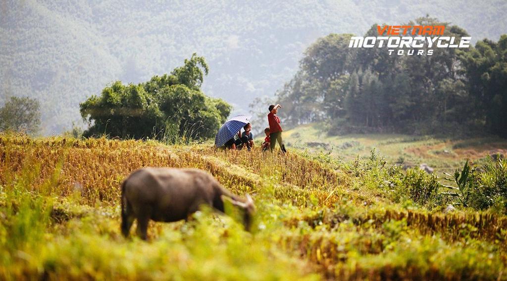 12 Day Vietnam Motorbike Tours