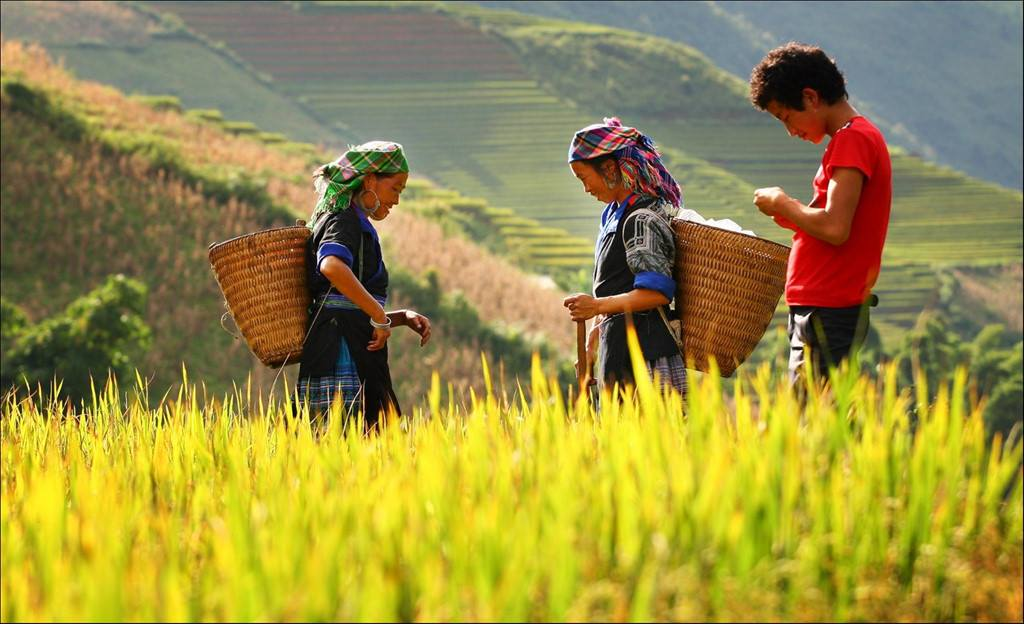 Vietnam Motorcycle Tours - 17 Days Of Incredible Riding