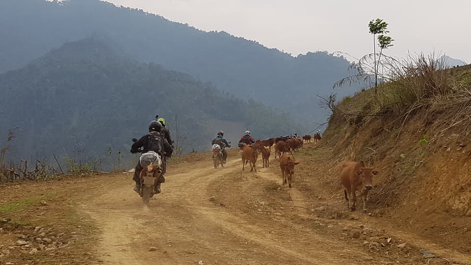 North Vietnam Motorbike Tour: 4 Days Trip Full of Challenging and Exciting