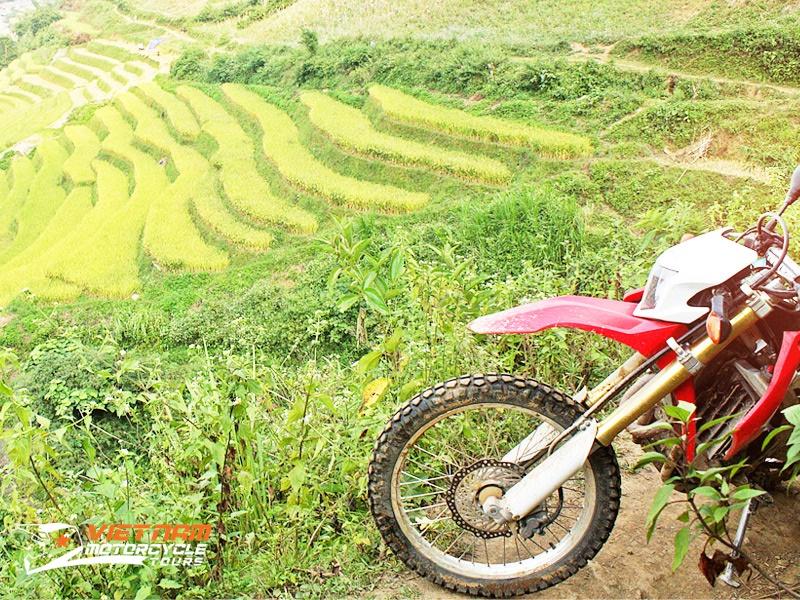 MOTORBIKE TOURS OF VIETNAM