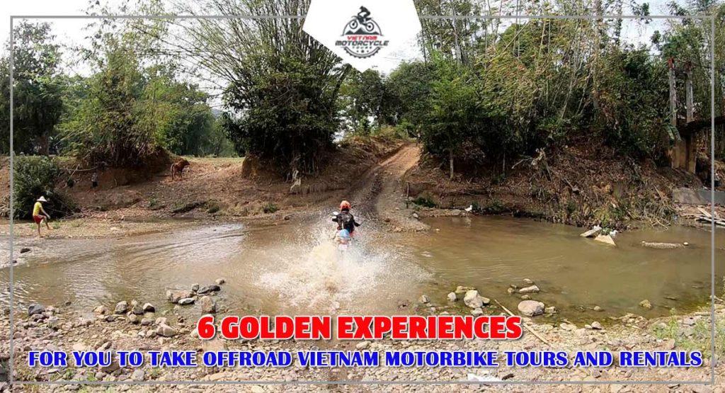 6 Golden Experiences