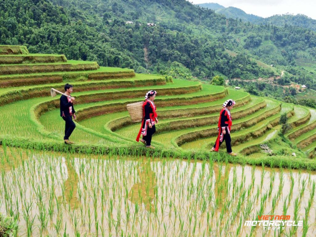 Interesting summery watering season - Ha Giang loop tour by Motorbike